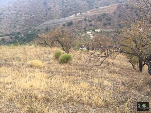 Plot for sale in RIO BERMUZA (Canillas de Aceituno), 18.000 € (Ref.: C-464)